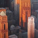 Urban forest, Manhattan - painting by Janet Kenyon